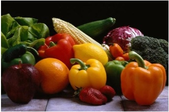 Food as instant fuel to the Body