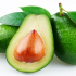 Avocado-The Super Fruit
